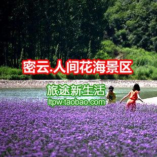 【电子票】人间花海景区门票 北京密云人间薰衣草庄园
