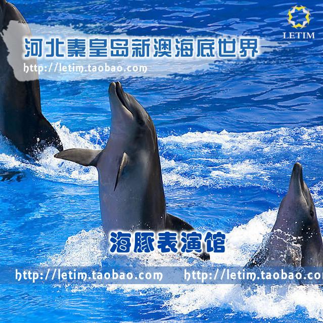河北秦皇岛新澳海底世界 海豚表演馆 景区门票 现票 电子票