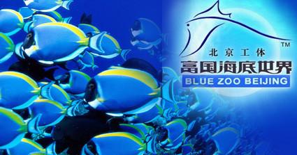 北京工体富国海底世界门票通票成人含表演,(含2号馆)